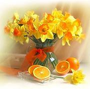 Stai cercando AIHOME Quadri con fiori? | LIONSHOME