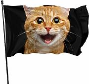 AOOEDM Flag Full Face Cat Sit Flag Decorazioni per