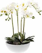 /Ø 30cm Foglie Decorative//Orchidea Finta artplants.de Foglie dorchidea phalaenopsis Artificiale con Radici aeree 19cm Verde