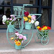 Balcone appariscente Rack di fiori in ferro Impianti all'aperto Display Stand