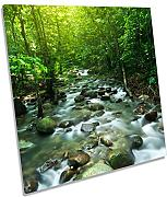 Canvas Geeks Tropical mountain Stream Landscape