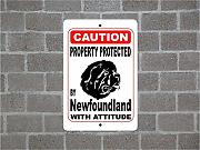 Fhdang Decor Property Protected by Newfoundland