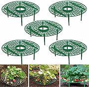 Strumenti da giardino in plastica sovrapposti fai da te 2 pezzi Mini traliccio rampicante Fiore Supporti vegetali per piante rampicanti allaperto per interni cortile Supporto per staminali vegetali