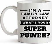 Funny Mug For Family Law Attorney - I'm A