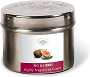 GREEN TREE CANDLE 0805460312485 Fig e spezie,