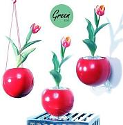 Greenball Planter , Greenbo Vaso per piante,