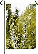 hongwei Winter Wattle Garden Flag Verticale a