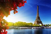 Inspired Walls Eiffel Tower Paris Landscape Giant