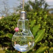 Bulbi In Vaso Di Vetro.Bulbi In Vaso Confronta Prezzi E Offerte E Risparmia Fino