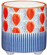 Kitchen Craft Piccolo Vaso Decorativo per Interni,