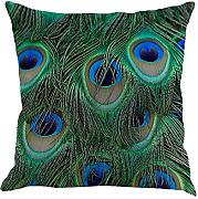 LEEDY Feather throw Pillow case, cuscino di