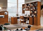 Stai cercando Scrivanie con libreria? | LIONSHOME