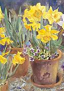 Narcisi in Vaso 30 X 45 Cm Decorativo Primavera