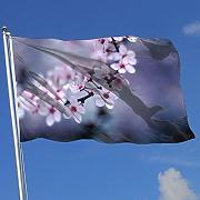 Oaqueen Bandiere, Fly Breeze 3 X 5 Foot Flag