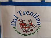Piumino D Oca Matrimoniale Trentino.Stai Cercando R P Piumini D Oca Lionshome