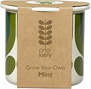 Orla Kiely OK435 Grow Your Own Striped Tulip