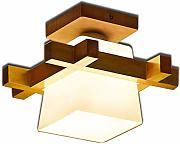 Plafoniere Per Corridoio : Stai cercando tlx lamp plafoniere lionshome
