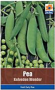 ScoutSeed Pea Kelvedon Wonder Vegetable Pacchetto