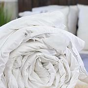 Silk Bedding Direct Piumone Riempito di Seta di