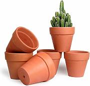 T4U 10,7cm Pianta Grassa Vasi in Terracotta Set di