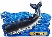 Time Traveler Go Canada Animal Whale Frigorifero