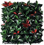 Viridium Photinia Siepe artificiale in mattonelle