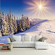 Xbwy 3D Natural Landscape Mural Pine Forest Forest